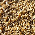 Sharp Coarse Sand